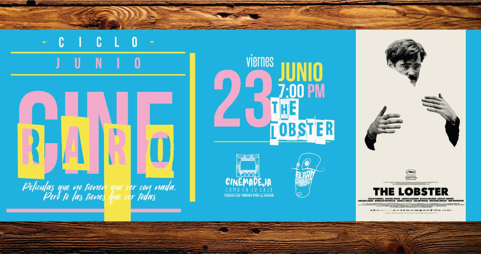 Proyección de la película 'The Lobster' en el ciclo de cine raro de La Madeja de Gente, Bucaramanga