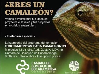 """Lanzamiento del programa """"Herramientas para camaleones"""""""