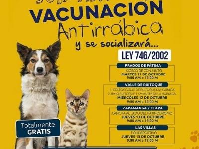 Vacunación gratuita para mascotas