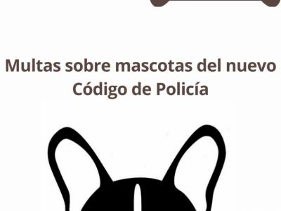 ¿Sabe usted qué multas sobre mascotas tiene el nuevo código?